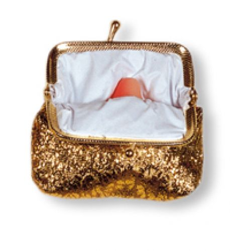 2007 - Small purse with penis